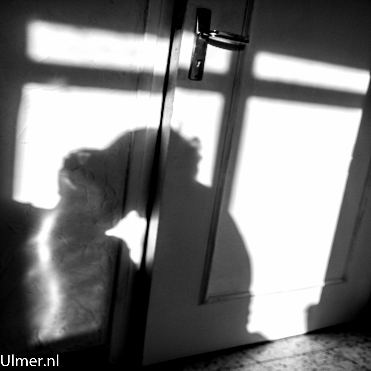 ombres shadow